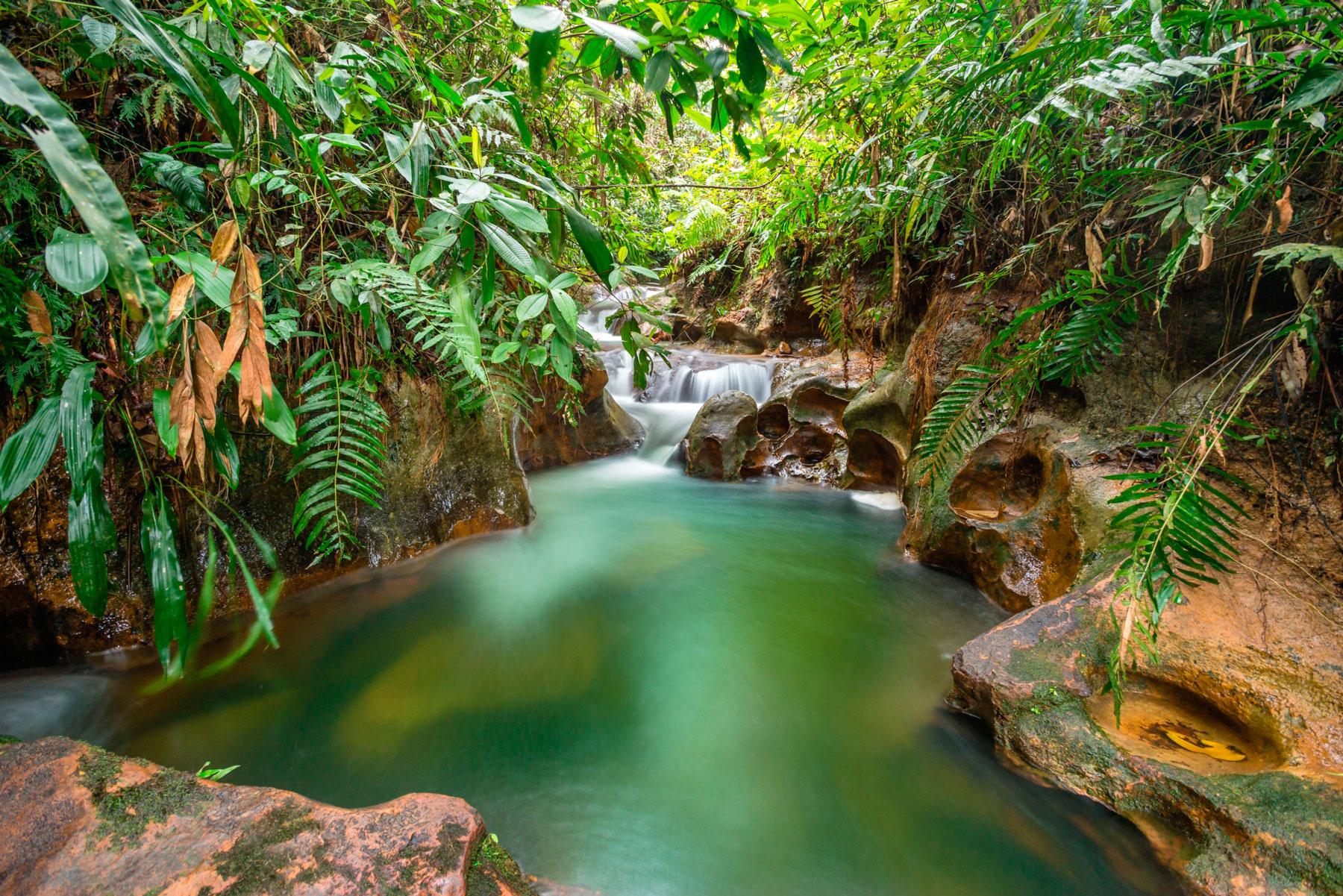 Parque ecol gico el para so de pedro portal de turismo - El paraiso del mueble ...