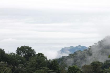 Calera Amazonica y Orteguaza Adventure